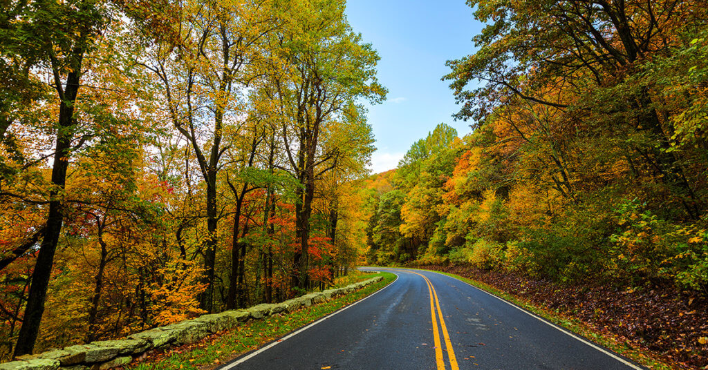Photo shows roadway in Shenandoah National State Park